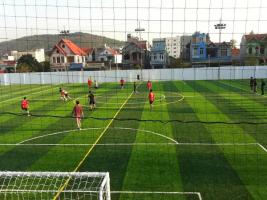 Top 4 Sân bóng đá nhân tạo chất lượng nhất tại Quy Nhơn, Bình Định