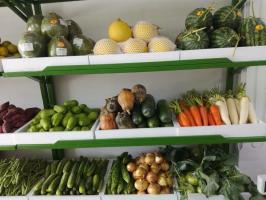 Top 5 Cửa hàng thực phẩm sạch uy tín và chất lượng nhất Thanh Hóa