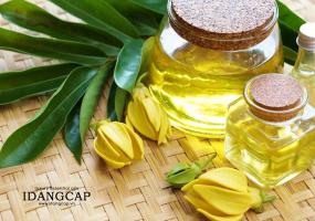 Top 5 Loại tinh dầu thiên nhiên xông thơm phòng ngủ ngon, đuổi muỗi và giảm căng thẳng